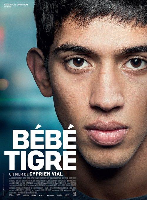 """Affiche du film """"Bébé tigre"""""""